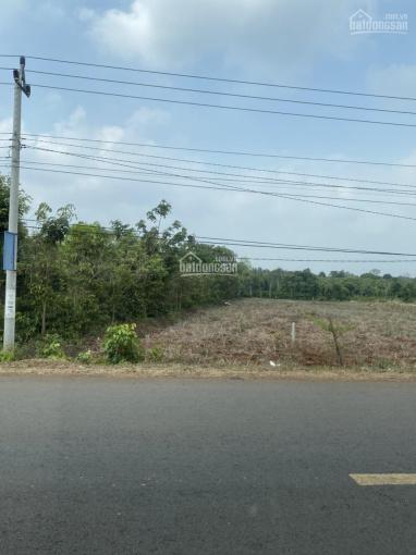 Bán đất mặt tiền kinh doanh Tỉnh lộ 5 diện tích 10x100m thổ cư 120m2 ảnh 0