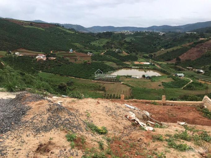 Bán hơn 4 sào đất trồng cây lâu năm thôn 3, xã Mê Linh, Huyện Lâm Hà, Lâm Đồng ảnh 0