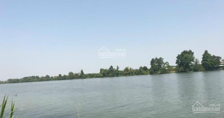 Bán vườn cam mặt tiền sông Đồng Nai 11.800m2, đường hiện hữu vào tận nơi ảnh 0