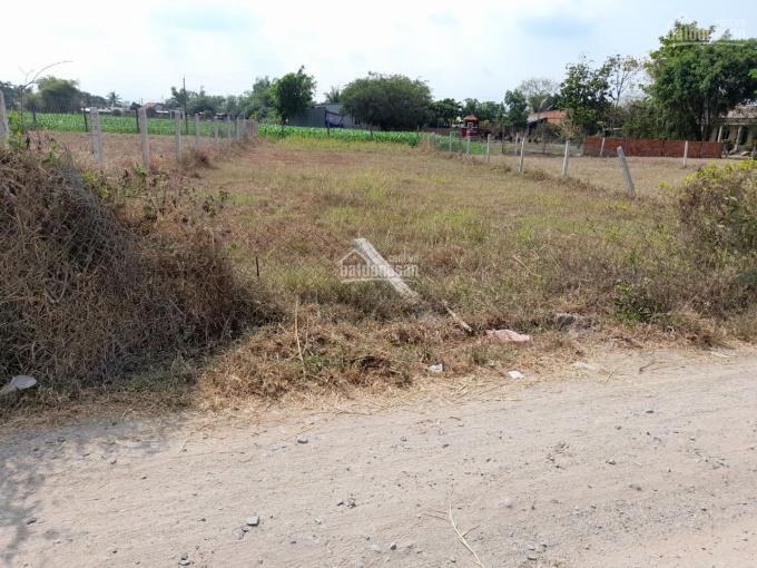 Đất đường nhựa Trương Tấn Sang vô 30m, thuộc Đức Hòa; Long An. 466m2, SHR thổ 100% ảnh 0