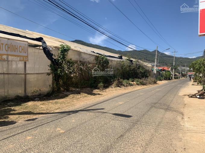 Cần bán đất trung tâm thị trấn huyện Lạc Dương, chuyển đổi full xây dựng được 0989703968 ảnh 0