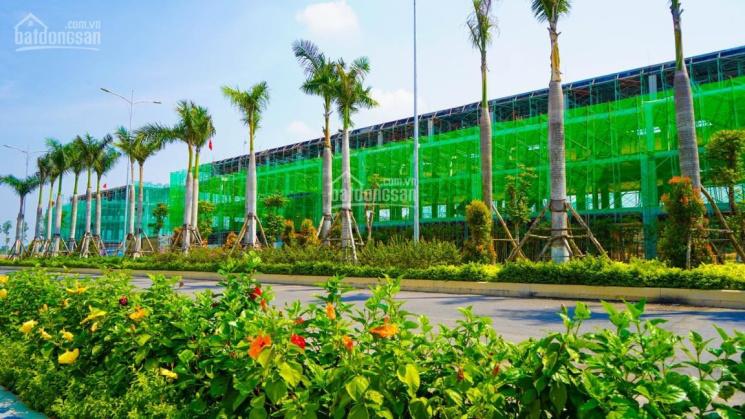 Shophouse mặt tiền đường 34m, 6x20m, trung tâm huyện Long Thành ảnh 0