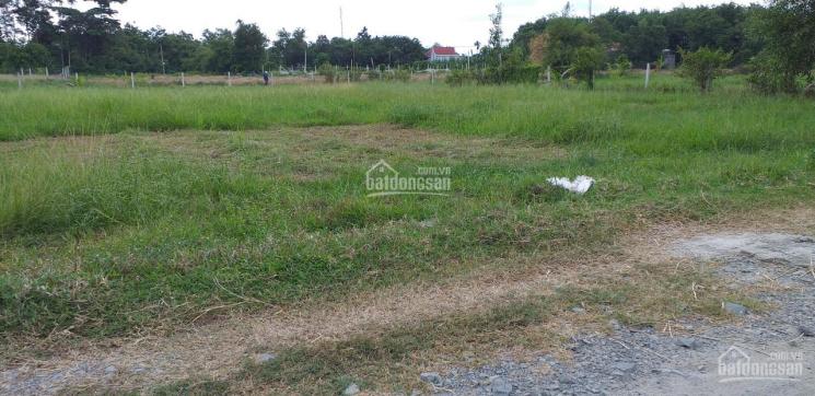 Bán nhanh và gấp lô đất khu dân cư xã Phước Thạnh, huyện Củ Chi 1545m2 (25×50) có 400m2 thổ cư ảnh 0