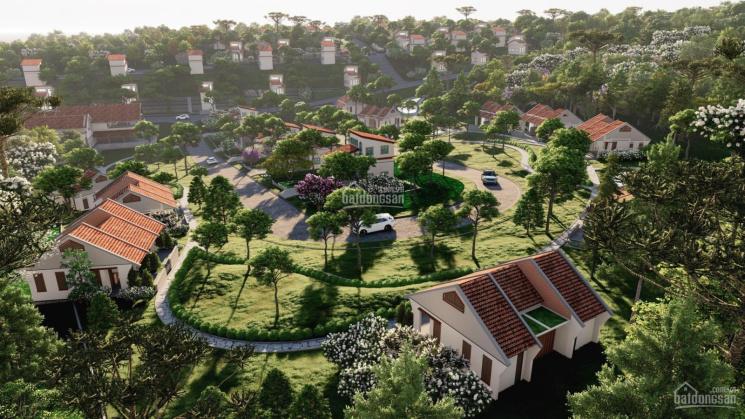 Sun Valley Bảo Lộc, second home view đồi làng biệt thự Pháp ảnh 0