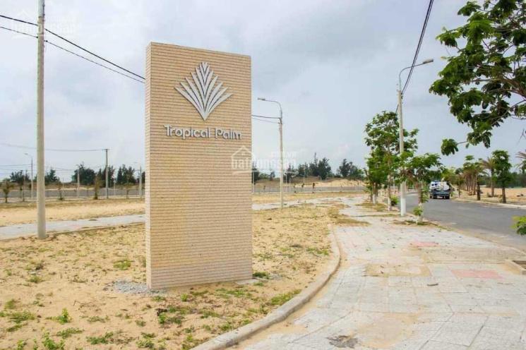 Mở bán đất nền Tropical Palm quy hoạch ven sông Cổ Cò, giá chỉ 1,9 tỷ ảnh 0