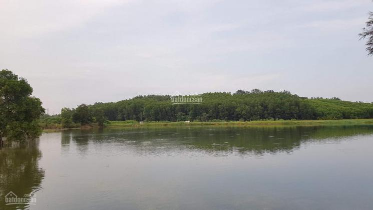 Nghỉ dưỡng view hồ Sông Mây, độc nhất khu vực ảnh 0