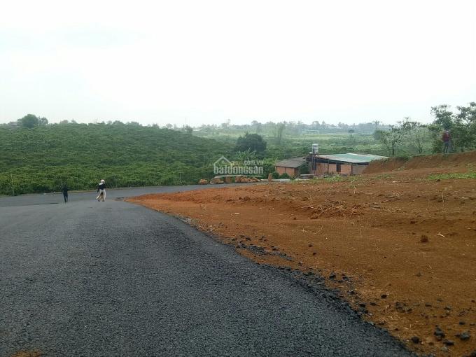 Thanh khoản cao với lô đất đẹp ngay TT Bảo Lộc, 200m2 thổ cư, chỉ từ 800tr ảnh 0