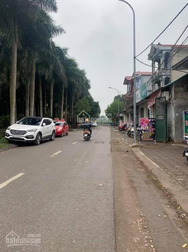 Cần bán đất kinh doanh mặt đường nhựa Nam Hồng, Đông Anh, Hà Nội ảnh 0