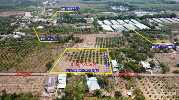 Bán đất mặt tiền Suối Cao, Xuân Lộc, dài 90m mặt tiền đường nhựa ảnh 0