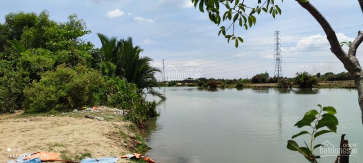 Đất mặt tiền đường nhựa, mặt sông Ông Kèo, đoạn qua Phú Đông - Cầu Cháy đẹp nhất khu vực ảnh 0