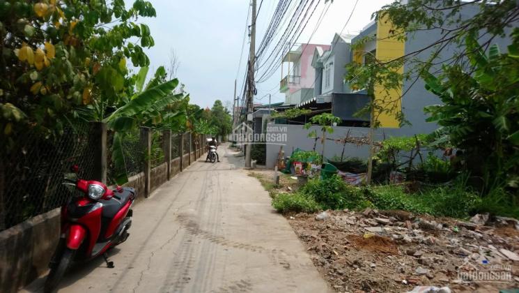 Đất 8*52 xây nhà vườn đẹp MT Bình Nhâm và Nguyễn Hữu Cảnh giá 4,16 tỷ, LH 0909036578 ảnh 0