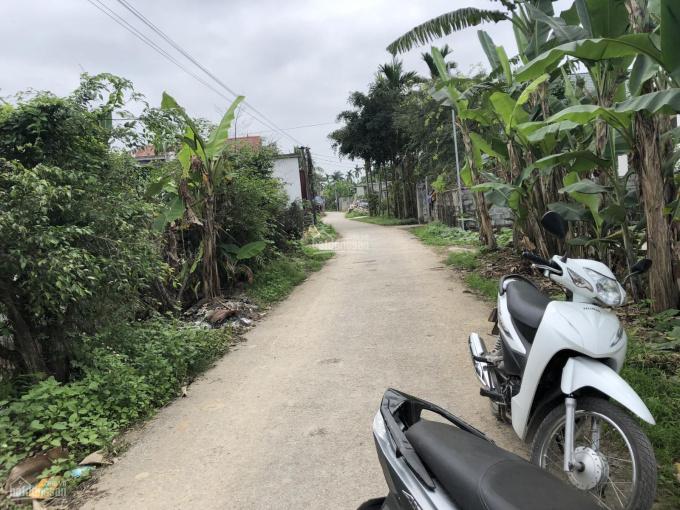 Bán đất 146m2 mặt đường làng thôn Trung, xã An Thái, H. An Lão, Hải Phòng ảnh 0