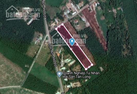 Bán lô đất 6873m2 MT xã Láng Dài, Lộc An, Bà Rịa VT, 5 phút ra biển, 8,5 tỷ ảnh 0