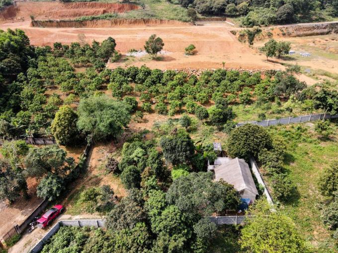 Bán nhanh 2200m2 đất thổ cư tại Tân Vinh thích hợp làm nghỉ dưỡng ảnh 0