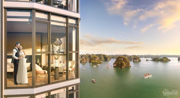 Chỉ hơn 700 triệu, sở hữu ngay căn hộ mặt vịnh di sản, sở hữu lâu dài, thông tin chính thức từ CĐT ảnh 0