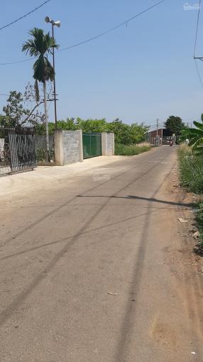 Cần tiền đầu tư nhà máy bán khu đất 11000m2 ngay UBND xã Hưng Lộc, Đồng Nai, QL1, giá 16 tỷ ảnh 0
