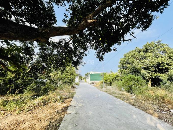 Bán đất có thổ cư giá rẻ thôn Tân Phú - Cam Thành Bắc, Cam Lâm, LH 08.66.44.33.22 ảnh 0