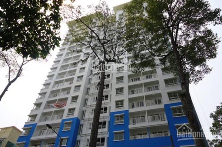 Mình cần ra mau căn hộ 155 Nguyễn Chí Thanh 2PN, 65m2, giá 2.5 tỷ view tốt ảnh 0