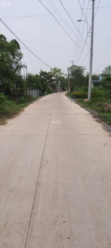 Cần bán nhà xưởng đường bê tông 4 mét 1 sẹc Nguyễn Kim Cương ảnh 0