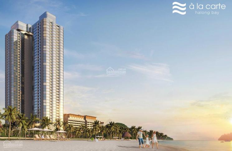 Cơ hội đầu tư BĐS: Sở hữu căn hộ view vịnh, vị trí kim cương tại Hạ Long giá chỉ 50tr/m2 ảnh 0