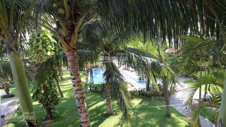 Bán resort mt Nguyễn Đình Chiểu 95m bên biển P.Hàm Tiến Tp Phan Thiết dt 4600m2 TMDV ảnh 0