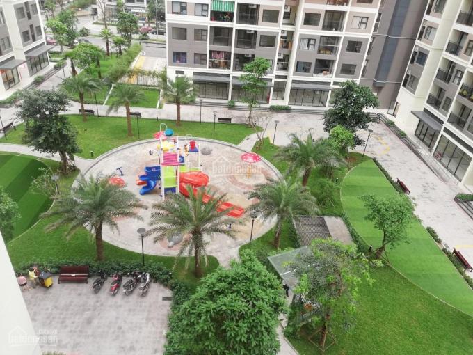 Chính chủ cần cho thuê căn hộ 1PN + 1 tại Vinhomes Ocean Park ảnh 0