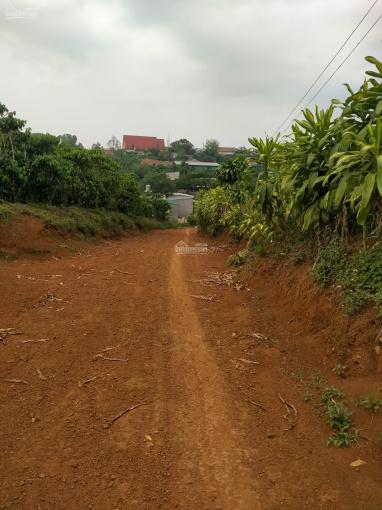 Bán đất vườn Lộc Phát, sổ riêng, hẻm xe hơi, cạnh khu dân cư, giá 800 tr/sào ảnh 0