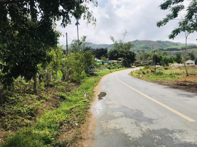 Đất mặt tiền Tỉnh lộ 9, Huyện Khánh Sơn, Tỉnh Khánh Hòa ảnh 0
