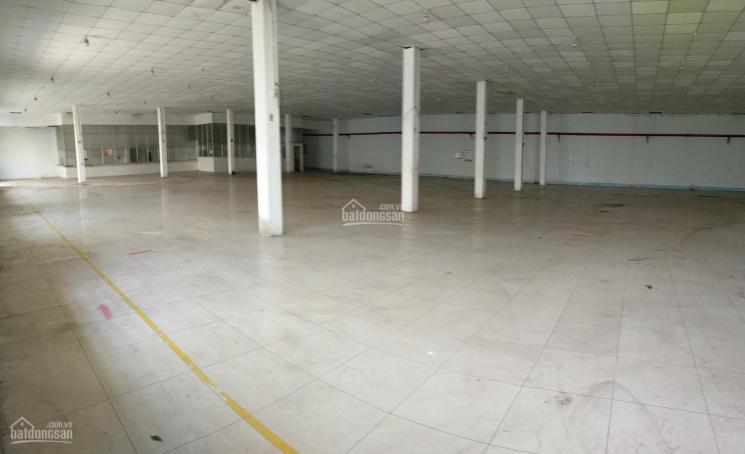 Cho thuê kho, xưởng 600m2 - 1000m2, cạnh Đầm Sen Q11, container tới kho, PCCC tự động ảnh 0