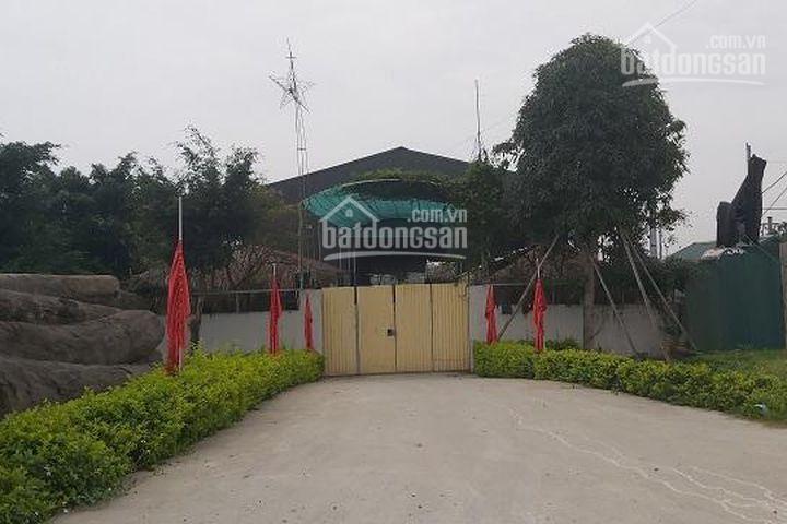 Chính chủ cho thuê nhà xưởng 1110m2 tại xã Ninh Sở huyện Thường Tín ảnh 0