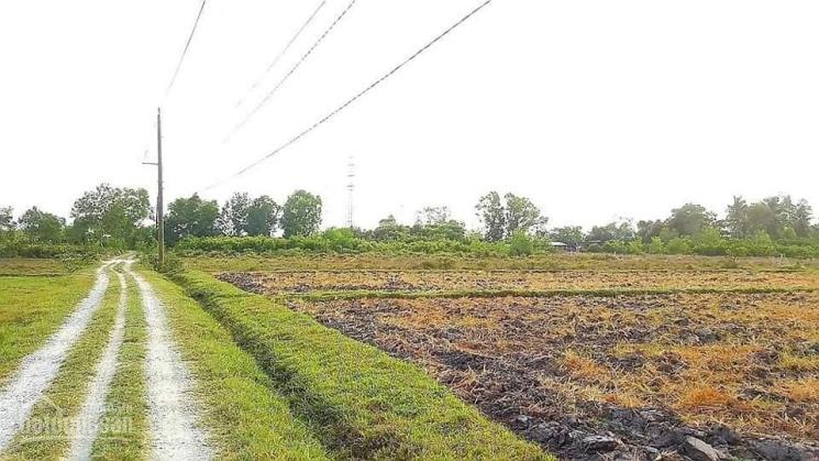 Đất đẹp 2 mặt tiền Phước An, Nhơn Trạch ảnh 0