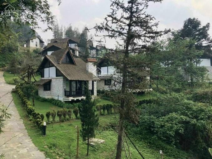 Resort làng Pháp cổ & spa đẹp mộng mơ lần đầu có tại thành phố Bảo Lộc ảnh 0
