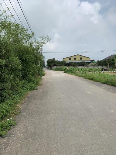 Bán lô đất xóm 7 Nghi Kim, đường nhựa hiện trạng 8m ảnh 0