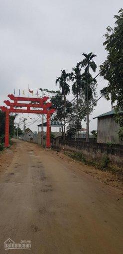Đại lý bán đất nhà vườn Lương Sơn, HN, giá từ 1 tr/m2. LH 0981627018/ 0918185628 ảnh 0
