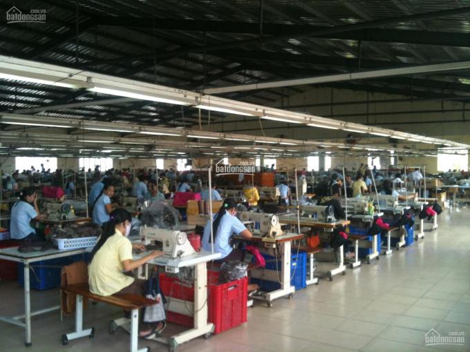Cho thuê toàn bộ nhà xưởng 1890m2+ máy móc trang thiết bị và CN đang làm may tại HL80 xã Vĩnh Lộc B ảnh 0