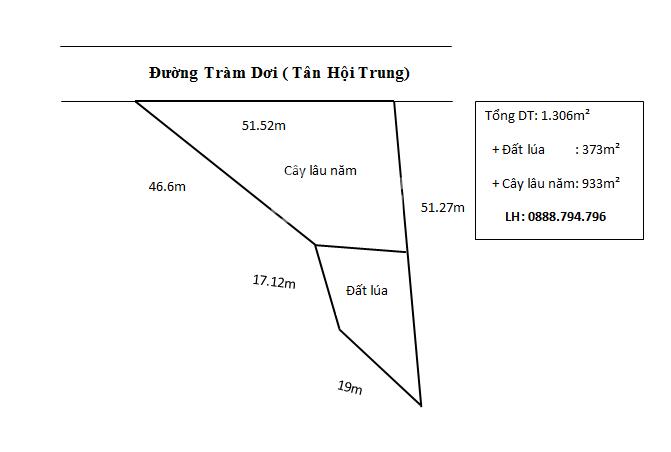 Bán 1.306m2 (51.5x46, CLN) đường Tràm Dơi, Tân Hội Trung, H Cao Lãnh. ảnh 0