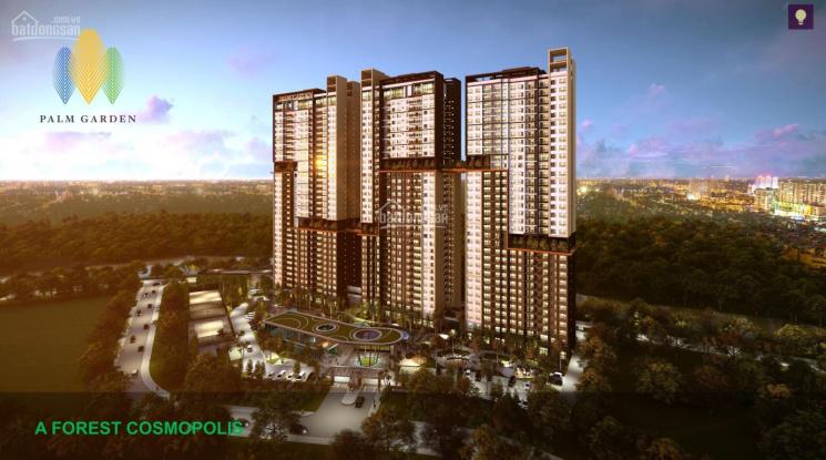 Căn hộ Palm Garden - Palm City - Nam Rạch Chiếc Quận 2 - Đối diện Saigon Sports City ảnh 0