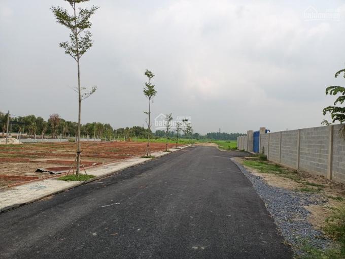 Đất chính chủ 101m2 tại đường Hồ Văn Tắng, Xã Tân Phú Trung, Huyện Củ Chi, Hồ Chí Minh giá 1,65tỷ ảnh 0