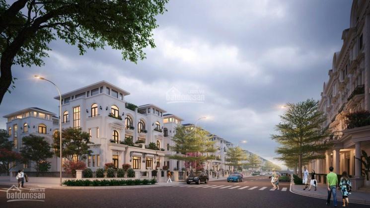 Bán biệt thự Louis City Hoàng Mai, siêu phẩm cho khách đầu tư ảnh 0