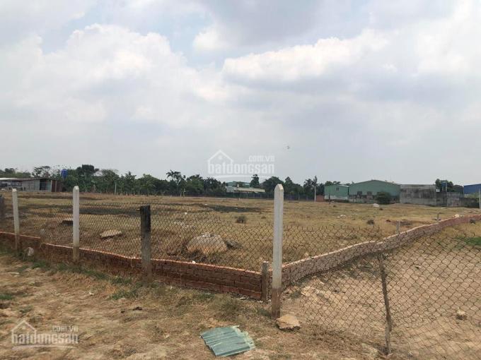Bán đất thổ cư 100% đường 10m, vuông vức 55x88m, Hóc Môn ảnh 0