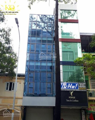Cho thuê mặt tiền Phó Đức Chính, Nguyễn Thái Bình quận 1, T8L, 4*20m, giá 135 tr/th ảnh 0