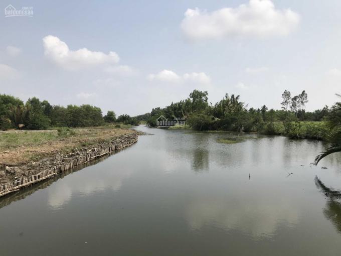 Đất vườn Phước Khánh, giá đầu tư diện tích SHR 1000m2, LH 0943.559.175 ảnh 0