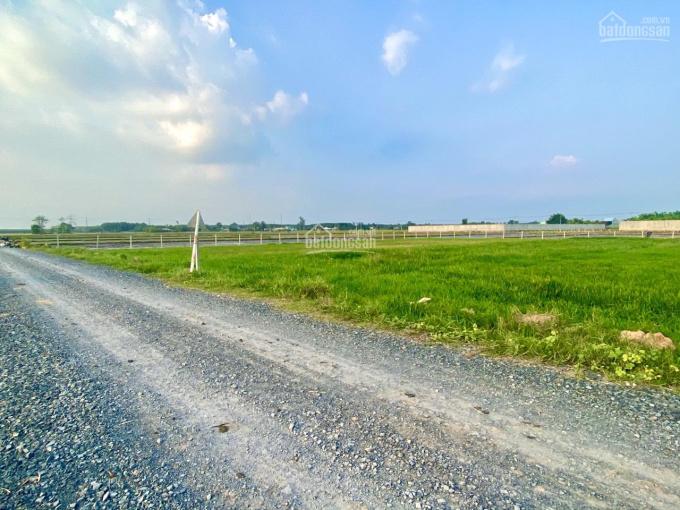 Bán đất vườn giá rẻ ở Củ Chi, nằm trong khu dân cư, 508,2m2, giá 870tr. Có sổ riêng. LH 0932124748 ảnh 0