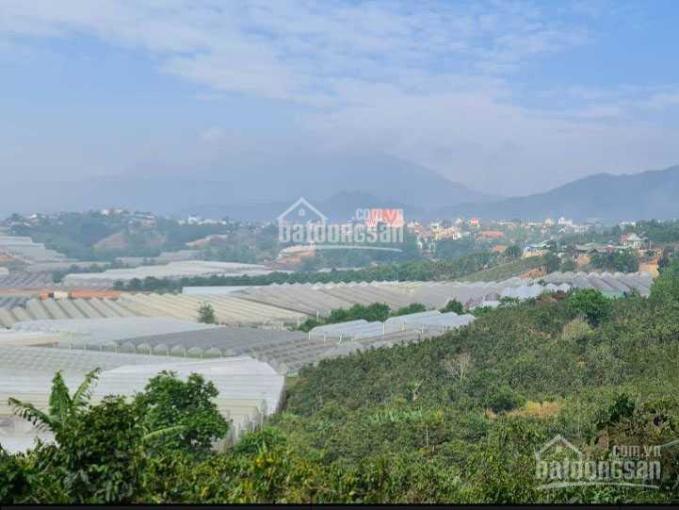 Bán đất diện tích rộng 18,582m2 Đạ Sar, huyện Lạc Dương ảnh 0