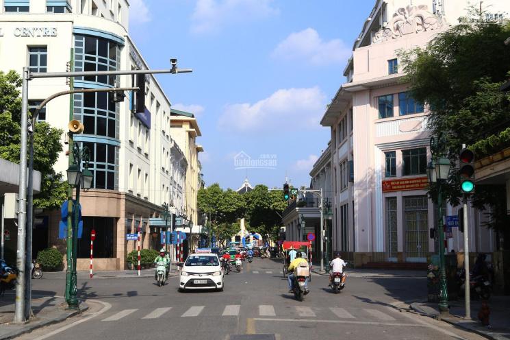 Chính chủ cho thuê biệt thự 240m2 x 3 tầng lô góc mặt phố Thành Công mặt tiền 15m phù hợp làm spa ảnh 0