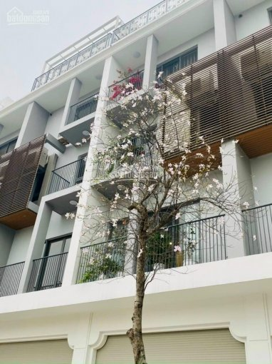 BQL dự án The Manor tổng hợp shophouse, LK, biệt thự đã hoàn thiện nội thất giá sốc từ 13tr/tầng ảnh 0