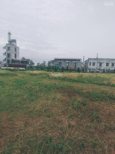 Bán 5.1ha đất TMDV xây bệnh viện và khu phục hồi chức năng tại trung tâm TP Hải Dương ảnh 0
