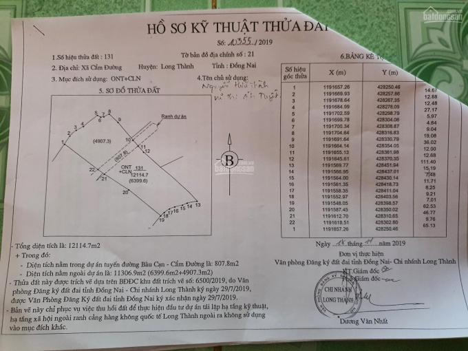 Đất Sân Bay Long Thành mặt tiền đường Vành Đai, Bàu Cạn, Cẩm Đường ảnh 0