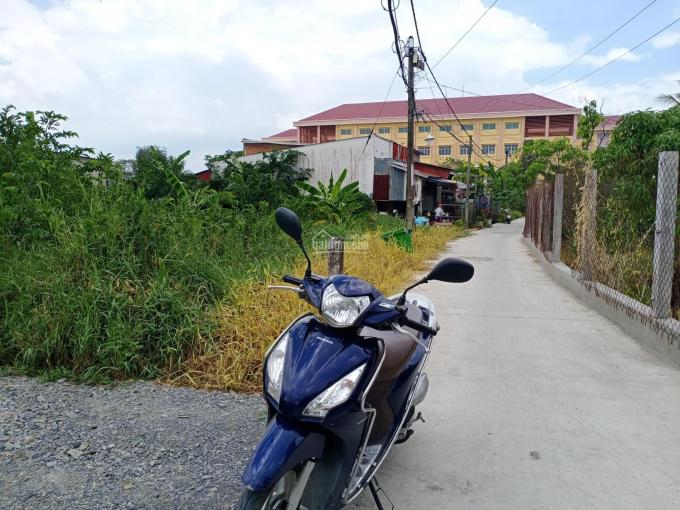 Bán đất thổ cư tại xã Hưng Long, huyện Bình Chánh ảnh 0