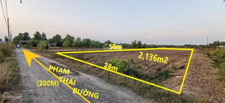 Bán tháo lô 1 sẹc cách Phạm Thái Bường 200m, rẻ hơn giá thị trường, thích hợp đầu tư lâu dài ảnh 0